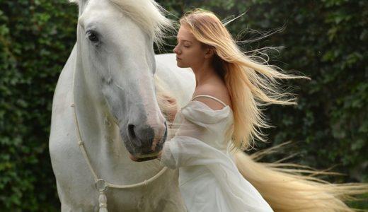 馬が好きな人の心理!男性と女性の性格を徹底解説